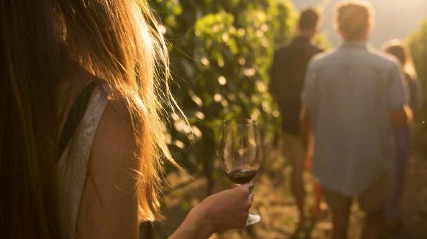 Wine tour in penticton